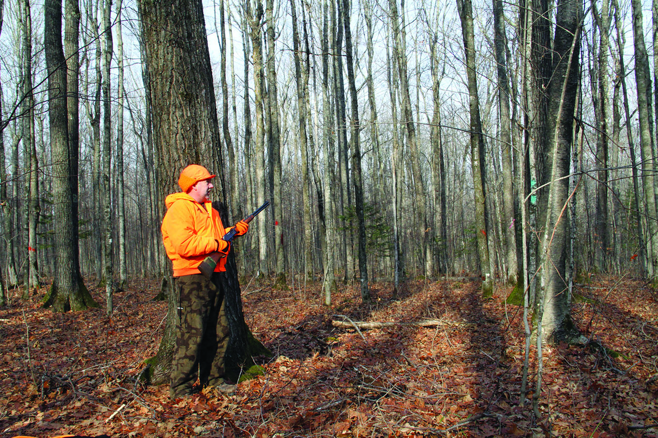 Deer hunting rules the roost in a Maine November
