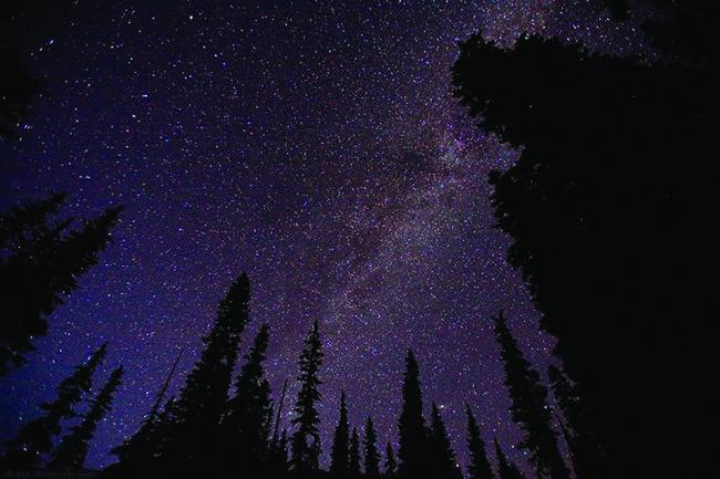 Star-filled sky over campsite